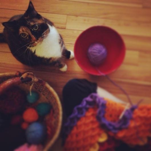 tesla & yarn