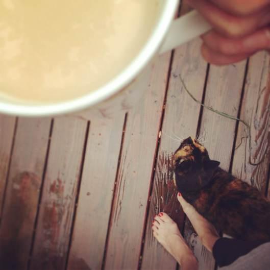 tesla and rain and coffee